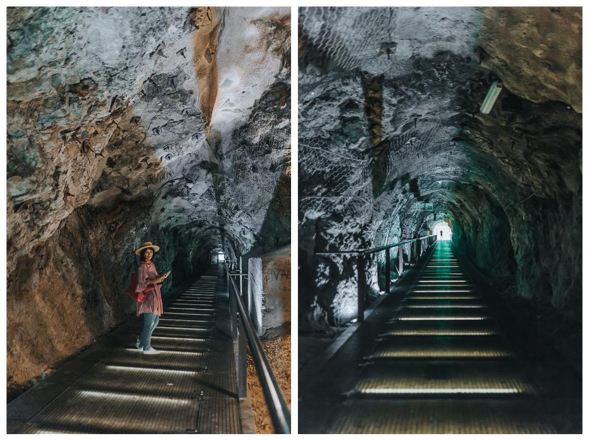 Collage_Tunel